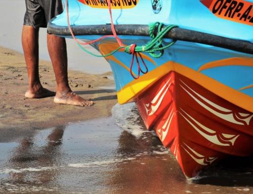 Sri Lanka: UN-Experte warnt vor Zunahme religiöser Spannungen