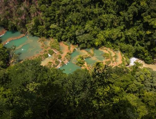 Guatemala: Für Umwelt aktive Pastoralassistentin getötet